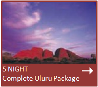 special 2 nights